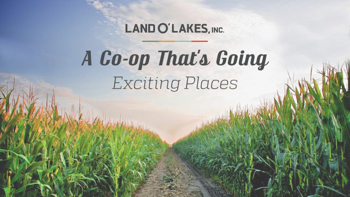 Land O'Lakes Inc PowerPoint Presentation Slide Examples 2