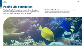 Pacific Life PowerPoint Presentation Slide Examples 6